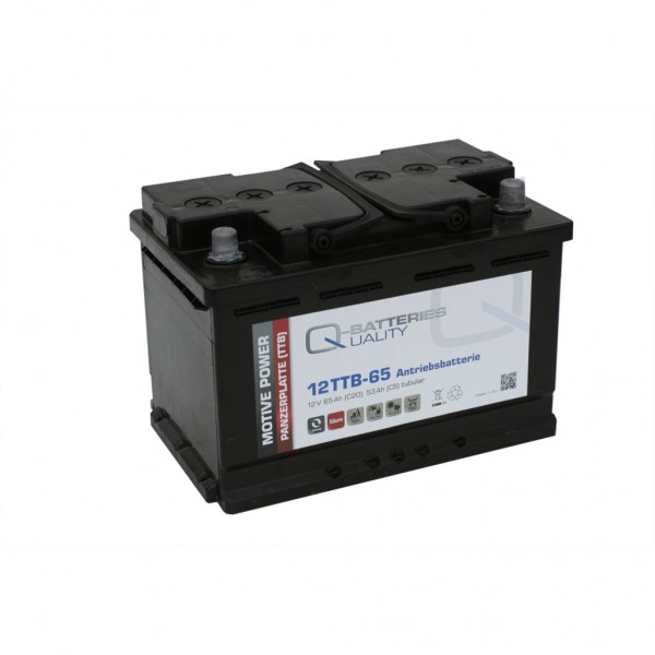 Batería Qbatteries Tubular Plate Battery 12TTB-65. 12V - 65Ah Caja L3 (278x175x190mm)